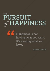 Happiness-s-not-having-what-you-want-Its-wanting-what-you-have
